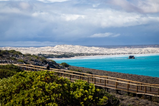 Boardwalk at the Head of the Bight